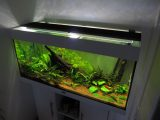 Aquarium Led Beleuchtung Selber Bauen Schullebernds Technikwelt intended for proportions 1024 X 768