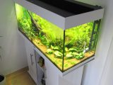 Aquarium Led Beleuchtung Selber Bauen Schullebernds Technikwelt with regard to proportions 1024 X 1365