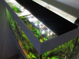 Aquarium Led Beleuchtung Selber Bauen Schullebernds Technikwelt within proportions 1024 X 1365