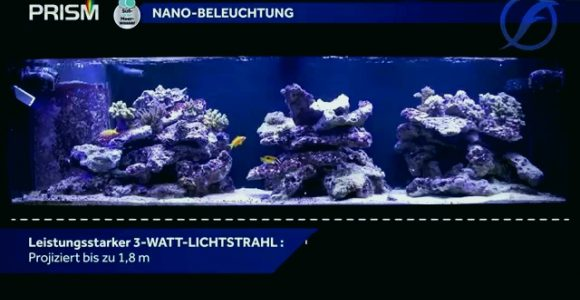 Aquarium Led Beleuchtung Test Wunderbar Fluval Led Beleuchtung pertaining to dimensions 1280 X 720
