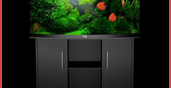 aquarien led beleuchtung erfahrung aquarium komplett inkl hochwertiger led beleuchtung in. Black Bedroom Furniture Sets. Home Design Ideas